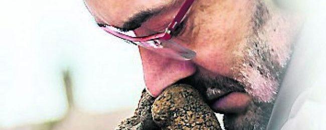 Pascal Bardet hume la Truffe de 665 g